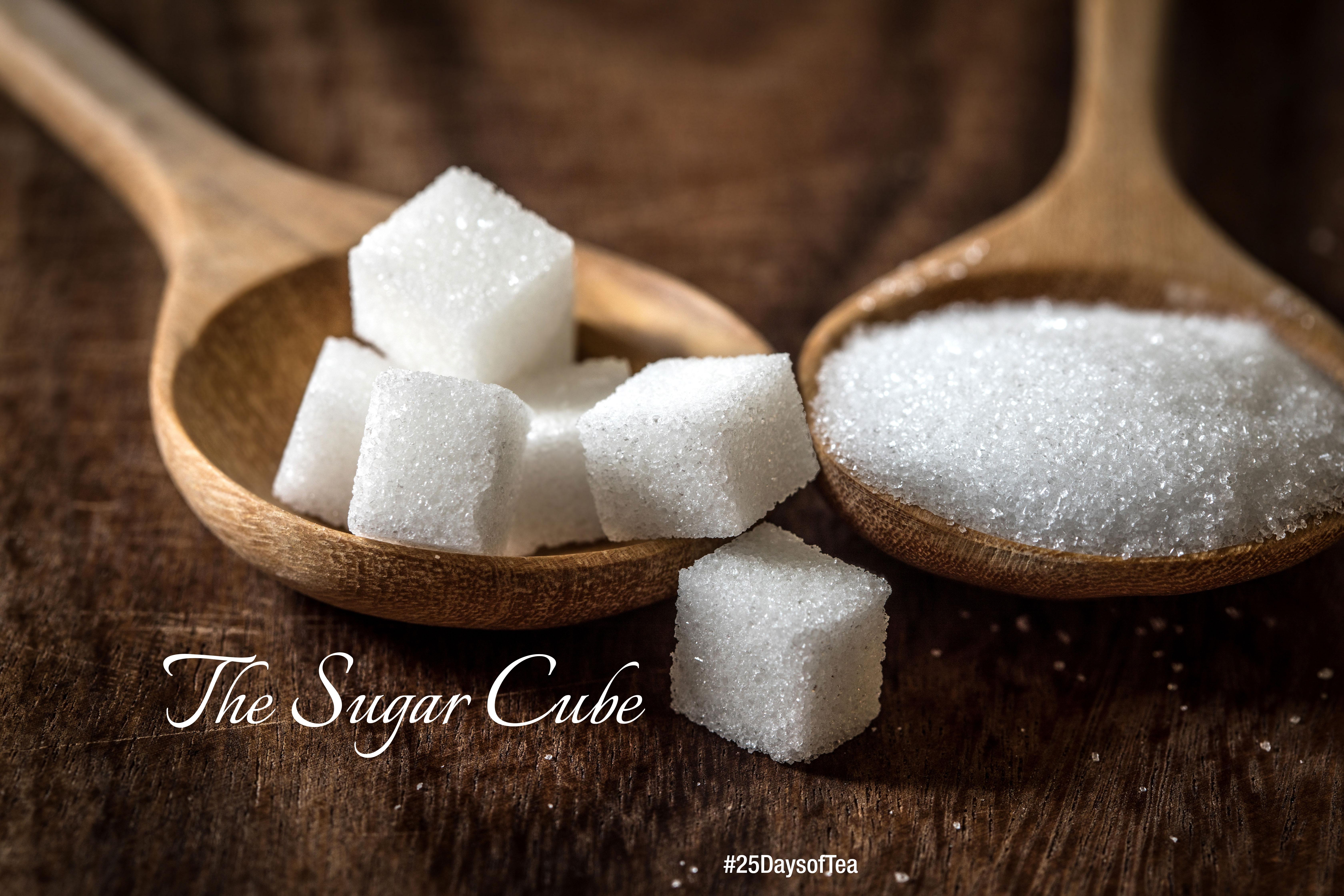 pearl_SugarCubeDay7